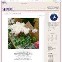 7月豪雨の影響に関しまして - 花慶blog