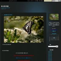 秋の地元での散歩 - 蝶と自然の物語