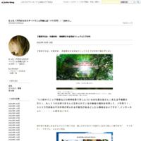 だめんずうぉ~か~のくらたま先生に「すごい!」を連発させた男 - たった1万円からのスタートで2ヵ月後には146万円!!「JRAフ…