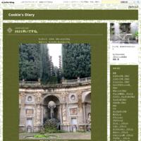 samui ナチュラルな食事屋 - Cookie's Diary
