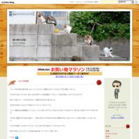 JBL スピーカー JBLFLIP4BLK - 独り言の日記