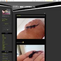 ニシアフリカトカゲモドキ♂ - アクアマイティー最新入荷情報BLOG