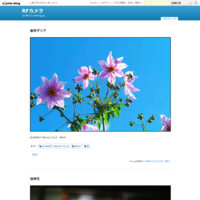 しだれ桜 - R-D1s  M9-P