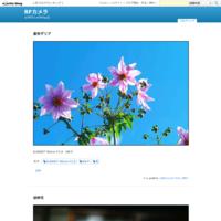 額紫陽花 - R-D1s  M9-P