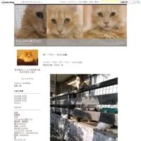 文豪たちが書いた「猫」の名作短編集 - ネコと文学と猫ブンガク