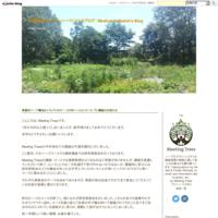 ブログのお引越し - 英国認定メディカルハーバリストのブログ /        Medical Herbalist's Blog