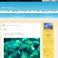 クマドリカエルアンコウ三宅島2021年 - 三宅島バーディLOGのページ