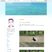 初夏の道東(知床半島等)撮影旅行(№3) - 何でも写真館