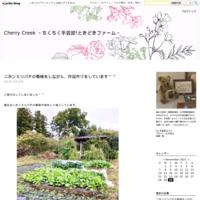 痛みの記憶8 - Cherry Creek                                                 ~ちくちく手芸部!ときどきファーム~