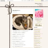 11/10 デザインフェスタ出展 - きぃほわ blog***