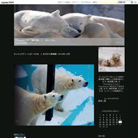 【お知らせ】ブログお引越しのご案内 - Paradizoo - 動物園って、楽しいね。