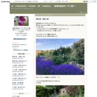 奈良・京都の旅'21 春その2 - IL PARADISO VERDE DI NORINA ~美瑛印象派ガーデン便り~