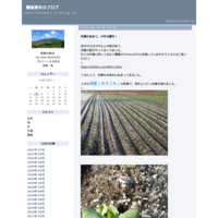 収穫の始まり。今年は豊作! - 農業青年のブログ