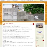 九州北部豪雨 - 日々の記録