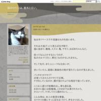 おばさんSPECKホルダー - 猫のひたいは、意外と広い。