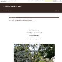 ◆桜、サクラ、ネモフィラ、夕暮れ時…次女猫ちゃん - ☆彡ちいさな幸せ☆彡別館