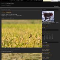 シジュウカラ06月30日 - 旧サンヨン野鳥撮影放浪記