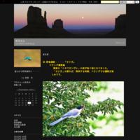 ホシガラス - 岳ちゃん