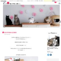 6年ぶりのアイシア「極楽ねこ」カレンダー - きょうだい猫と仲良し暮らし