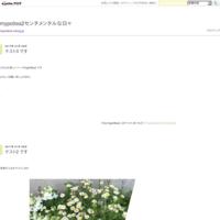 白バラ リスト覚え書き - mypotteaセンチメンタルな日々  with photos 2