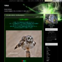 オジン日記7月22日アオバズク - 写鳥楽