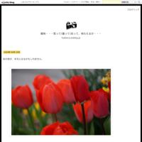 大阪モノレールを撮りました。 - 趣味・・・取って(撮って)走って、味わえるか・・・