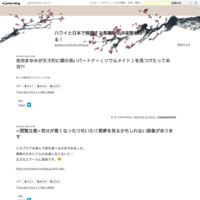 有名ブログの引っ越し - ハワイと日本で暗躍する悪魔教団の実態を探る!