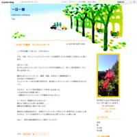 6/26  79個目クレジットカード - 一日一捨