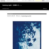 移りゆく季節 / changing of the season - Seeking Light - 光を探して。。。