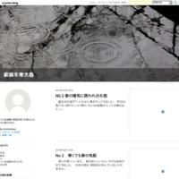 タムシバが開花(No.335) - 薪窯冬青 犬と山暮らし