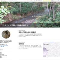 お知らせ - アンモナイト王国~北海道の石たち~