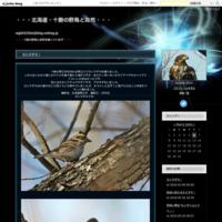 カシラダカ! - ・・・北海道・十勝の野鳥と自然・・・