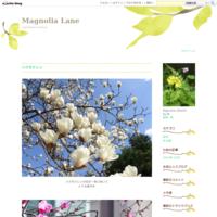 河原のタヒバリ、そしてイソヒヨ♪ - Magnolia Lane