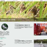 草津温泉に行ってきました20201203 - 田舎のじーじのつぶやき