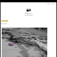 ニラの花 - 空の色
