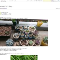 花粉症? - Shuu0518's Blog
