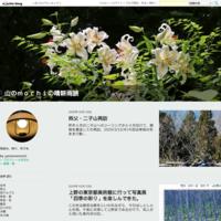 Yahoo!さんから引っ越し。テスト投稿は「秩父・二子山」 - 山のmochiの晴耕雨読