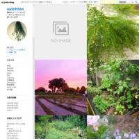 小さな家庭菜園(枝豆・小松菜・ルッコラ) - suichion