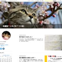 通院日 - ☆保護猫*ときどき*うち猫☆