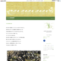 立秋の星空 - マリカの野草画帖