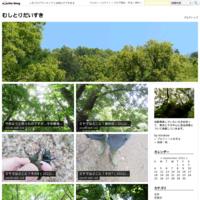 ミヤマに会いたいVol.4(2021/07/21ミヤマ♂8埼玉) - むしとりだいすき