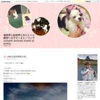 Messages from T ③ - ◎shanti animals shanti planet◎自然に在るものと共にヒトと動物へセラピー&ヒーリング