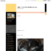 葵花ちゃん動画 - 四国犬 テツカナ今日この頃