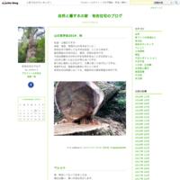 土地あります。 - 自然と暮す木の家 有吉住宅のブログ