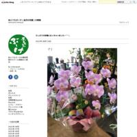製作の秘密… - あとりえぶーけ(金沢の花屋)の情報