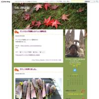 裏の庭の梅の木をチェーンソーで切る動画など - つれづれ日記