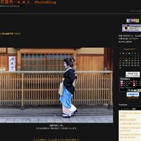 サツキライン(妙心寺塔頭・慈雲院) - 花景色-K.W.C. PhotoBlog