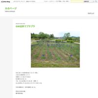 ちつのトリセツ - Bのページ
