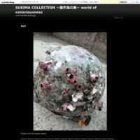 Metaphysical - SUKIMA COLLECTION ー無作為の美ー   Art of non artificiality