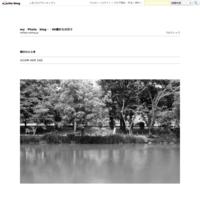 雨の日 - my Photo blog・・80歳からの日々